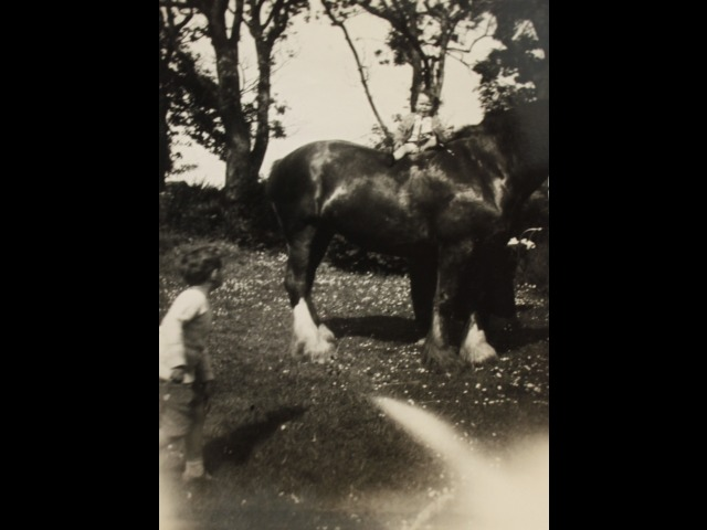 Ann Pickering on one of the Clysdale horses at Ballashamrock in the 1930s, with her brother, John, close by.