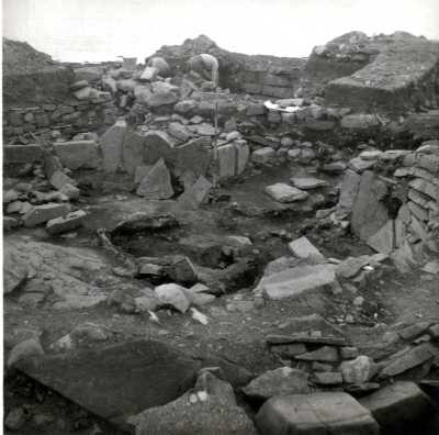 A general view of the site under excavation.